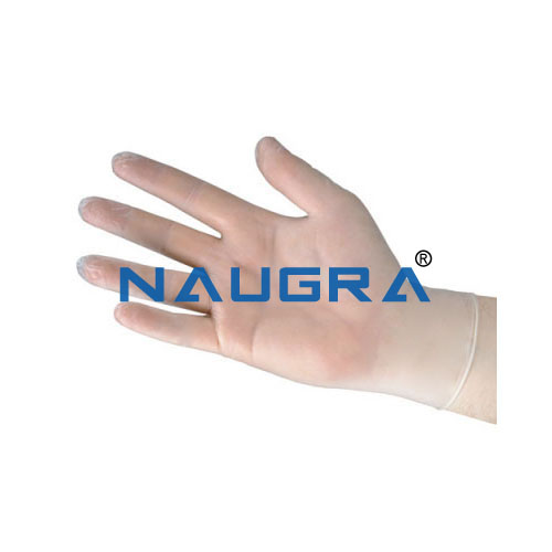 Vinyl Disposable Gloves from India